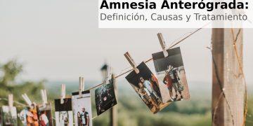 Amnesia anterógrada: Definición, Causas y Tratamiento